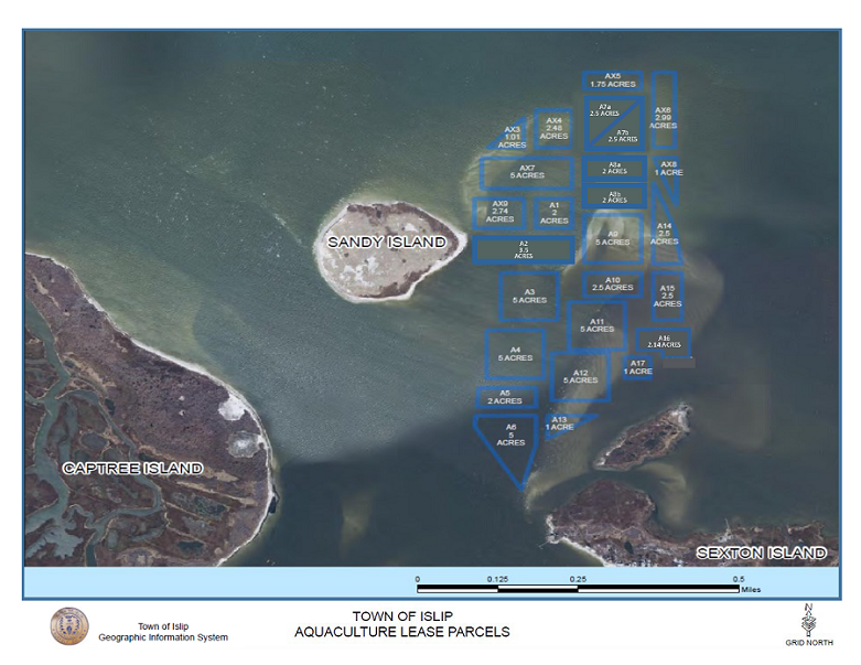 a satellite image of the aquaculture lease parcels off the cost of sandy island