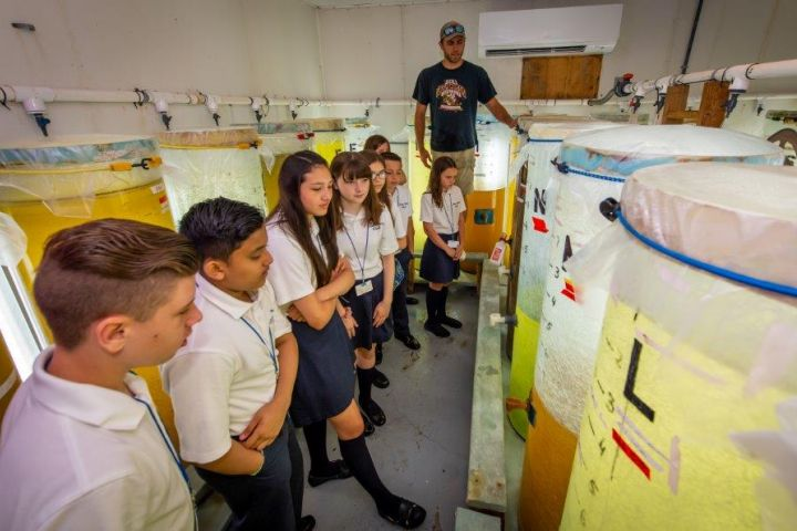 Students look on at larger tanks filled with different variables of water and liquid as a facility attendant explains